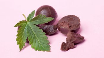 cbd chocolate effects benefits